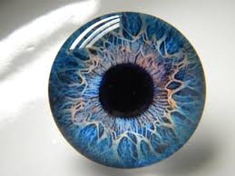 Glass Eyes Blue Eyes Human Eyes Doll Eyes Animal Eyes