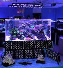aquarium lighting review sealife led