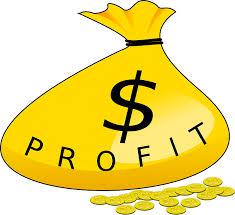 La Fonction Economique du Profit