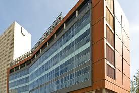 university of texas institute of molecular medicine
