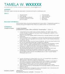 government job resume template claims examiner government job  government job resume template claims examiner government job resume format
