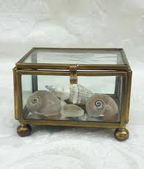 small glass brass box tiny s seas etched by and wall mounted display