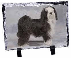 promotional tibetan terrier dog photo slate photo ornament gift id 141531