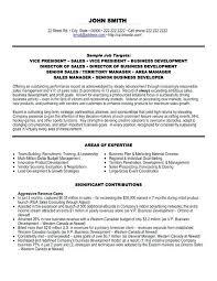 Vice President Marketing Resume Letter Resume Directory
