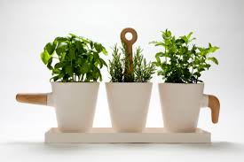 Loving these ceramic herb pots by Barcelona based designer Cristina Toledo,  especially the different handle designs. Such a simple yet elegant  collection.
