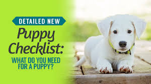 dog training books detailed new puppy checklist what do you need