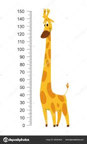 Giraffe Meter Wall Or Height Chart Vector Illustration