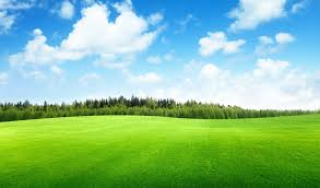 grass and sky backgrounds.  And Road Field Horizon Mountains Clouds Sky Wallpaper 7843x4462 Intended Grass And Sky Backgrounds