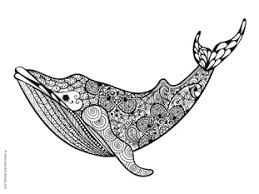 Small Picture Blue Whale Coloring Page Zentangle Whale Print Adult Coloring
