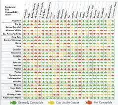 Silver Dollar Fish Compatibility Chart 17 1 Native Water Chemistries