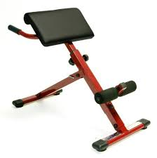 Amazoncom  Stamina Pro AbHyper Bench  Sit Up Bench  Sports Hyperextension Bench Reviews