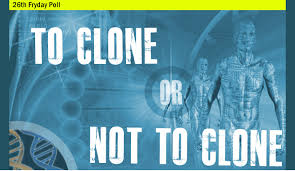 pros and cons of animal cloning hrfnd pros and cons of animal cloning