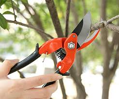 Ohuhu Traditional Bypass Pruning Shears Heavy Duty Garden Clippers Ideas For Cutting Stems Branches Shrubs And Hedges  Kush Kind