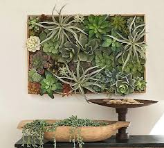 framed succulent wall decor framed succulent wall decor succulent wall planter