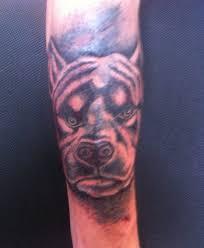 татуировка питбуль татуировки тату салон на колхозке