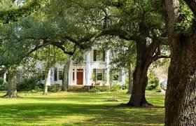garden district hotels new orleans. Best Kid-friendly Hotels In New Orleans Garden District