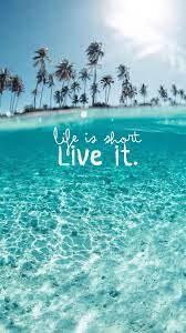 Ocean Life iPhone Wallpapers - Top Free ...
