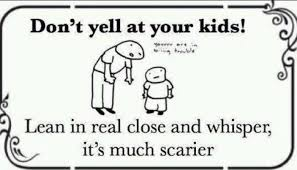 Funny Quotes For Kids Classy Dont Yell At Your Kids Funny Quotes