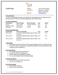 Pattern Of Resume For Job