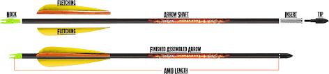 Compound Bow Arrow Length Chart Carbon Arrow Basics Measurement Standards Research Guide