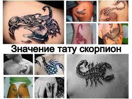 значение тату скорпион смысл история рисунка фото эскизы факты