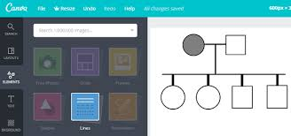 Pedigree Chart Maker Circles And Squares 4 Best Free Online Pedigree Chart Maker Websites