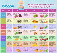 Thực đơn ăn dặm cho bé 10 tháng – Tuần 1 (Dành cho bé ăn dặm tích cực –  Ngày ăn 1-2 bữa) - bibabo.vn