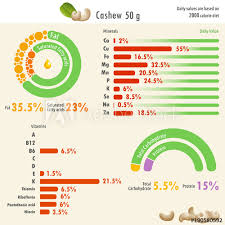 infographic of cashew nutritional value infographic ilration of cashew nutritional value with values of fat protein carbohydrate minerals and