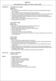 Resume Title Examples Gorgeous Resume Title Templates Examples Sample Joselinohouse Outstanding