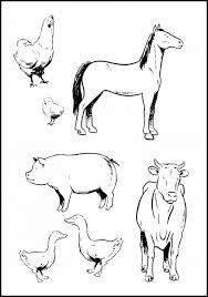 Adult ~ Farm Animals Coloring Pages Printable Pictures Goat Farm ...
