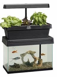 Self Cleaning Fish Tank Garden Diy Aquaponics 5 Best Self Watering Organic Aquaponic Garden Kits