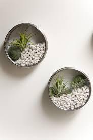 vertical magnetic terrarium 23 diy mini plant terrarium ideas