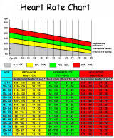 Exercise Heart Rate Chart For Kids Ditch Your Heart Rate Monitor Unusual Pulse Rate Chart For Kids