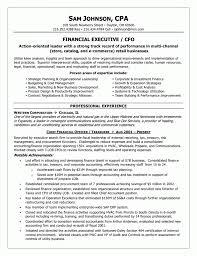 Download Internal Resume Template Haadyaooverbayresort Com