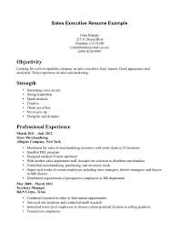 Sale Executive Resume Sample Sales Executive Resume