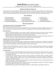 Program Security Officer Sample Resume Inspiration Sample Security Resume Mmventuresco