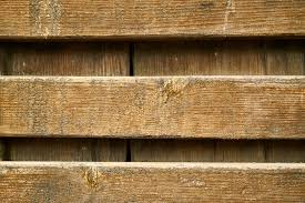 free images tree texture plank floor old wall beam pattern macro natural brown shelf furniture yellow closeup lumber background design