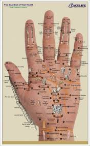 Sujok Therapy Points Chart Freeware Hand Reflexology Chart