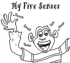 Five Senses Coloring Pages Senses Coloring Pages Five Senses ...