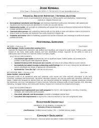 Internal Audit Manager Resume Sample Professional Letter Formats