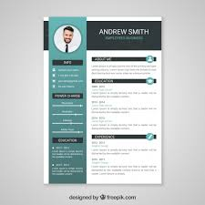 Professional Curriculum Vitae Template Adorable Professional Curriculum Vitae Template Vector Free Download