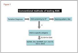 Ana Testing Aacc Org
