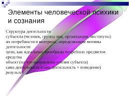 Структура психики человека Психология ru Психика и ее структура реферат