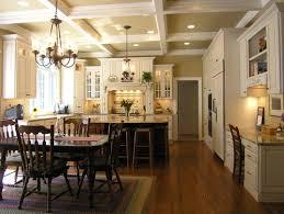 transitional kitchen lighting. Houzz Transitional Kitchen And Lighting