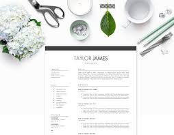 Resume Styles 100 Resume Styles That Always Land The Job Plus Tips To Learn When 12