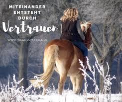 Miteinander Entsteht Durch Vertrauen Horse Aesthetic Pferde