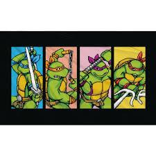 Teenage Mutant Ninja Turtles (TMNT ...