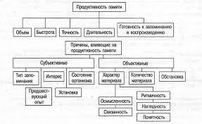 Память и способы ее развития Закономерности памяти pro psixology ru Продуктивность памяти