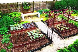 Planning A Kitchen Garden Kitchen Gardening Livinator