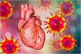 Rischio di miocardite dai vaccini del mRNA COVID rivalutati nello studio  canadese